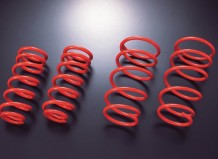 Apexi N1 Evolution Springs (all models)